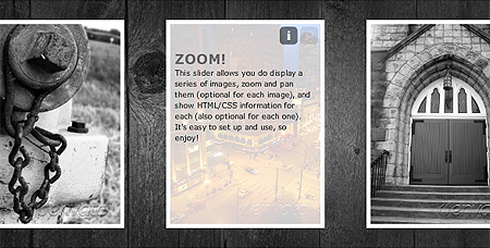 Slide Zoom Viewer